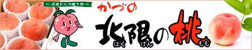 秋田県産北限の桃,もも,モモ