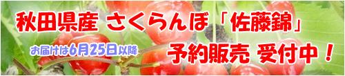 さくらんぼ,佐藤錦,秋田県産さくらんぼ